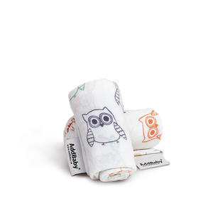 Baby's First Blanket White with Owls 4p